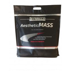 Aesthetic Mass 5000g chocolat Syntech Nutrition
